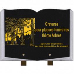 PLAQUE FUNÉRAIRE 25X35 LIVRE GRAVURES ARBRES SUR PIEDS
