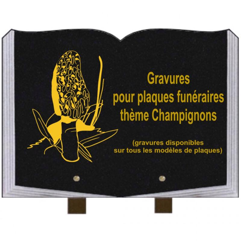 PLAQUE FUNÉRAIRE 25X35 LIVRE GRAVURES CHAMPIGNONS SUR PIEDS