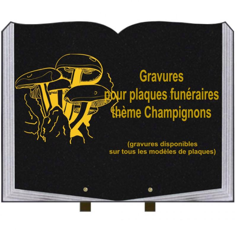 PLAQUE FUNÉRAIRE 35X45 LIVRE SUR PIEDS GRANIT CHAMPIGNONS
