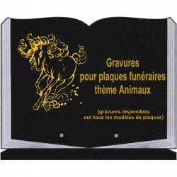 PLAQUE FUNÉRAIRE 30X40 LIVRE SUR SOCLE GRANIT ANIMAUX