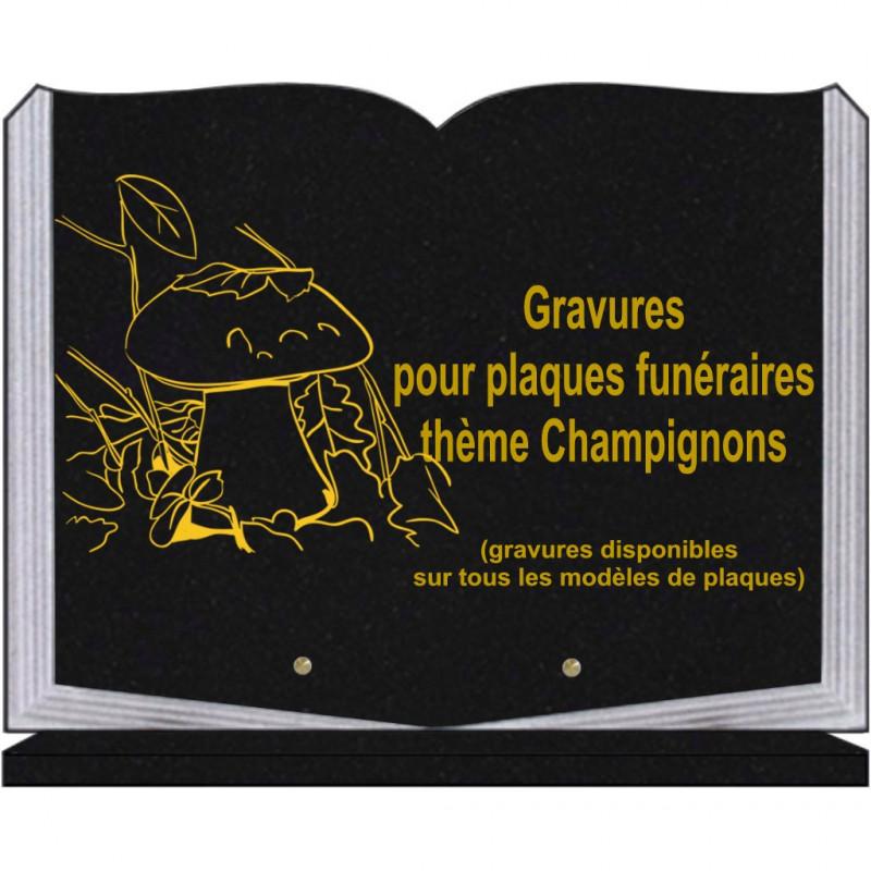PLAQUE FUNÉRAIRE 30X40 LIVRE SUR SOCLE GRANIT CHAMPIGNONS