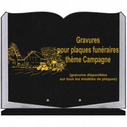 PLAQUE FUNÉRAIRE 35X45 LIVRE SUR SOCLE GRAVURE CAMPAGNE