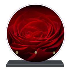 PLAQUE FUNÉRAIRE RONDE ROSE ROUGE 20 cm X 20 cm FPF2033