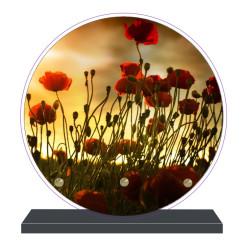 PLAQUE FUNÉRAIRE RONDE COQUELICOTS 20 cm X 20 cm FPF2115