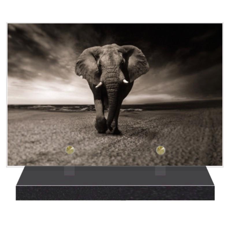 PLAQUE FUNÉRAIRE ANIMAUX ELEPHANT 20 cm X 30 cm FPFNX103