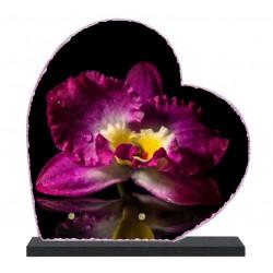 Plaque funéraire Coeur lave émaillée Fleurs Orchidée LE00152