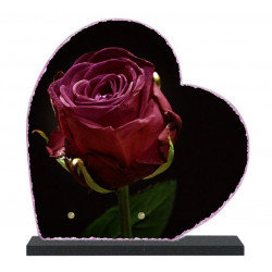 Plaque funéraire Coeur lave émaillée Rose LE00155