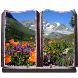 Plaque funéraire grand livre lave émaillée Montagne FPFLENX01