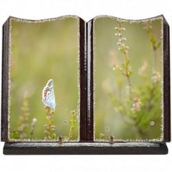 Plaque funéraire grand livre lave émaillée Papillon FPFLE00088