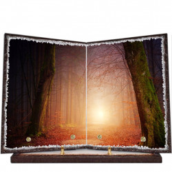Plaque funéraire livre lave émaillée Forêt LE00002