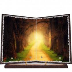 Plaque funéraire livre lave émaillée Forêt LE00004