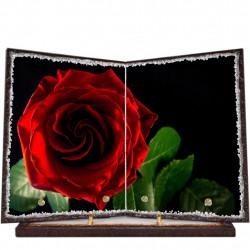 Plaque funéraire livre lave émaillée Rose Rouge FPFLE00073