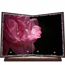 Plaque funéraire livre lave émaillée Rose FPFLE00083