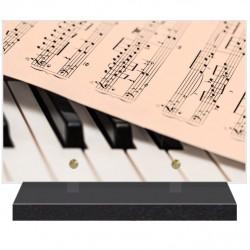 PLAQUE FUNÉRAIRE MUSICIEN PARTITION 20 cm X 30 cm FPFW00800