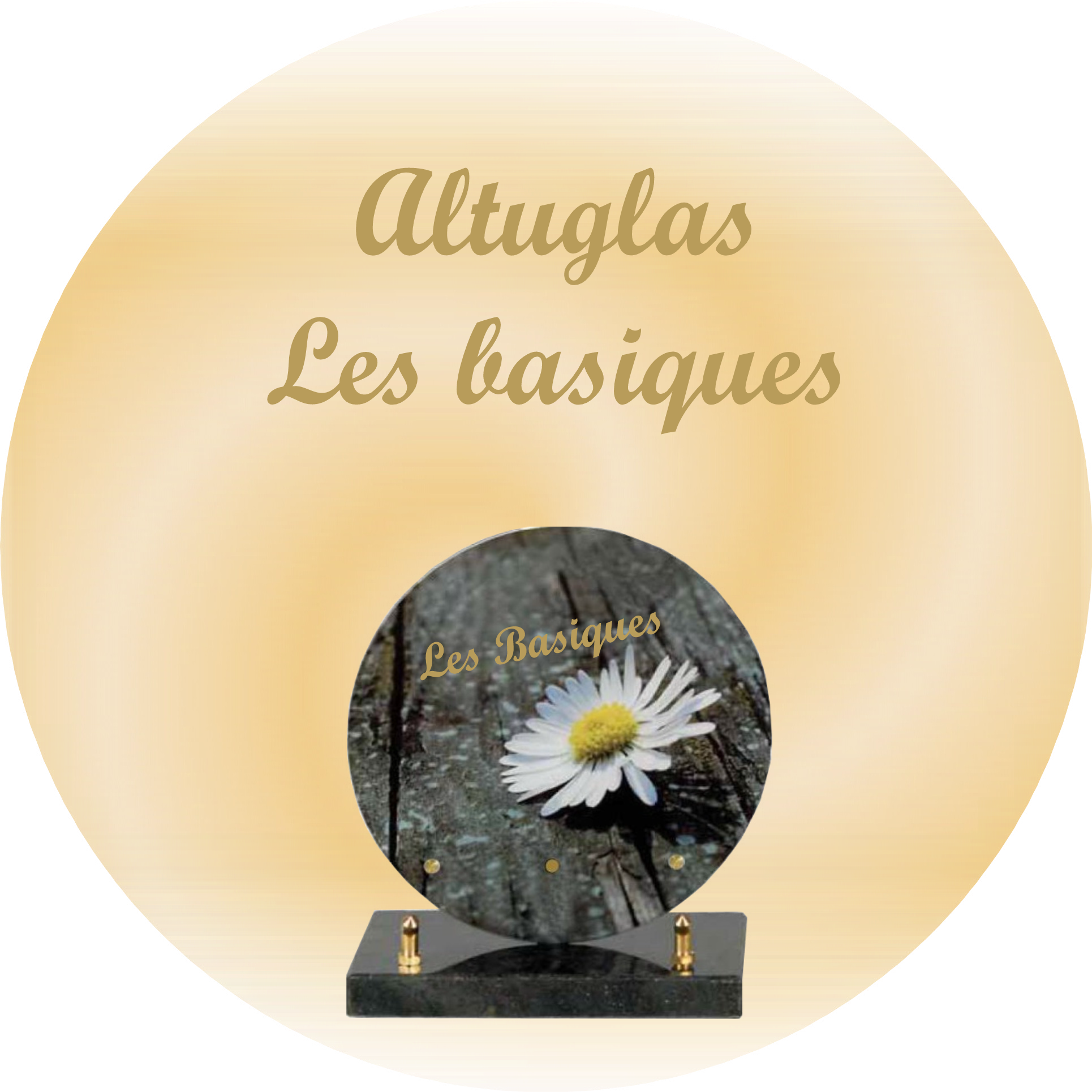 plaques funeraires altuglas basique SAINT-ELLIER-LES-BOIS