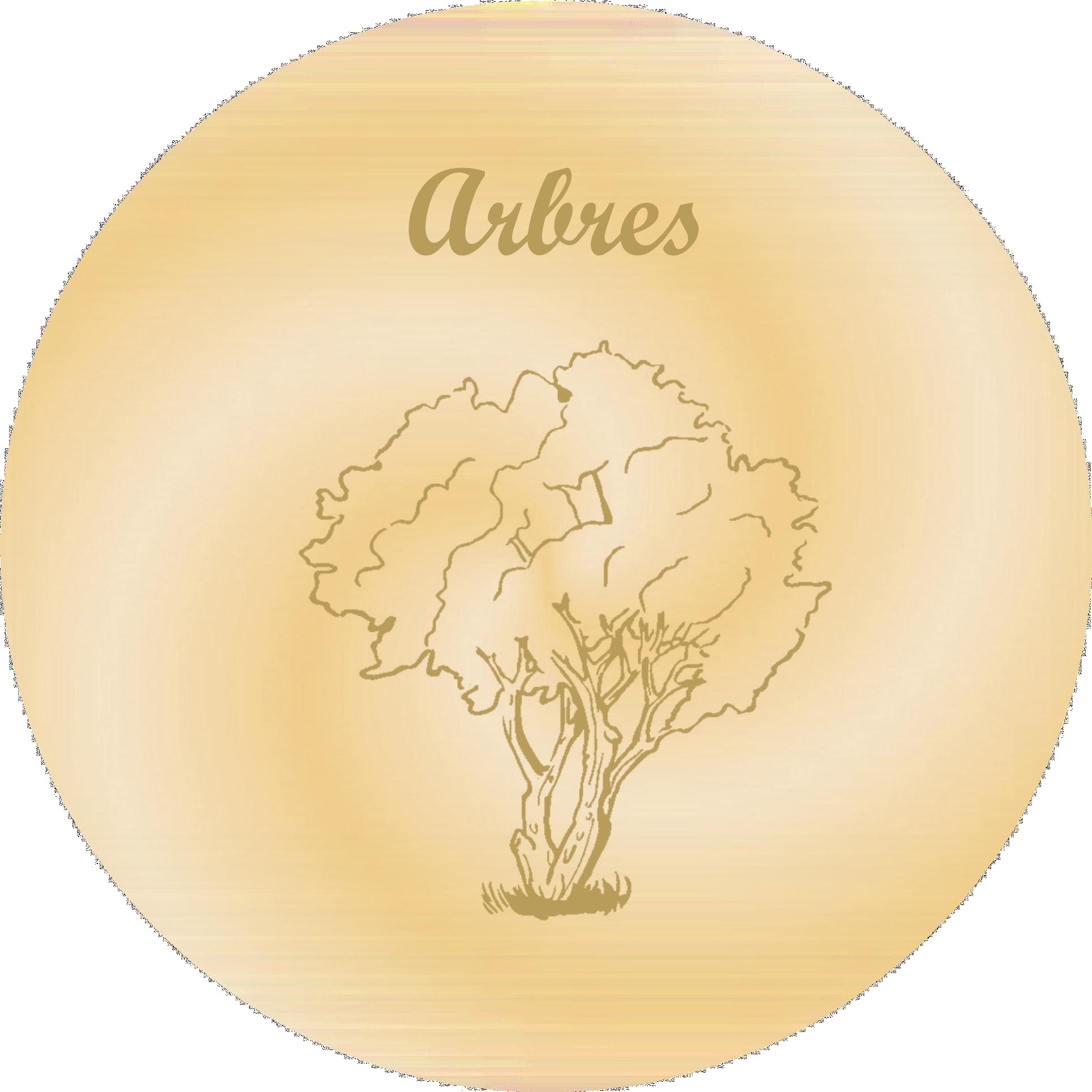 arbres gravure plaques funeraire