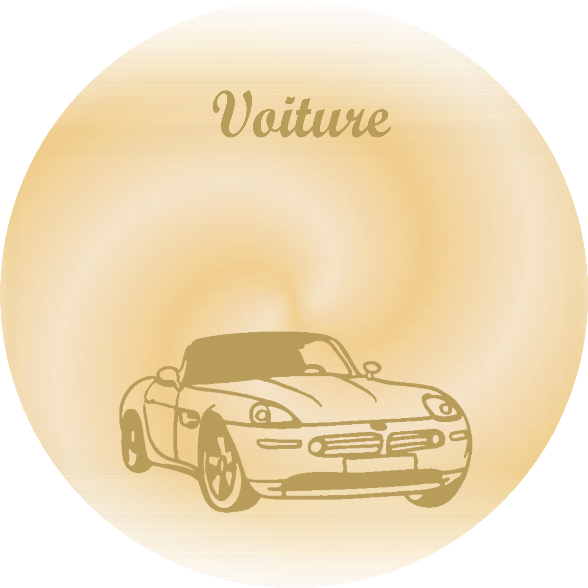 plaques fun raires voiture plaques fun raires. Black Bedroom Furniture Sets. Home Design Ideas