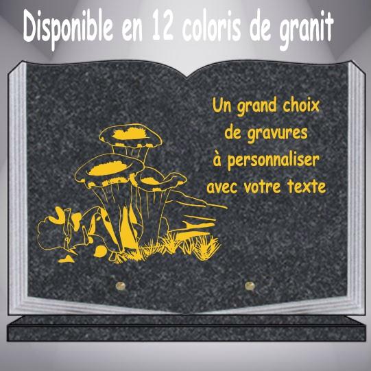 PLAQUE FUNÉRAIRE THÈME CHAMPIGNONS LIVRE GRAVÉE SUR SOCLE
