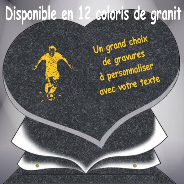 PLAQUE FUNÉRAIRE SPORTS SPORTIFS COEUR CG11