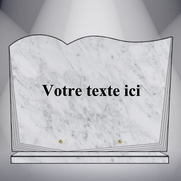 plaque funéraire granit TEXTE CG25 35X25 SOCLE MARBRE BLANC