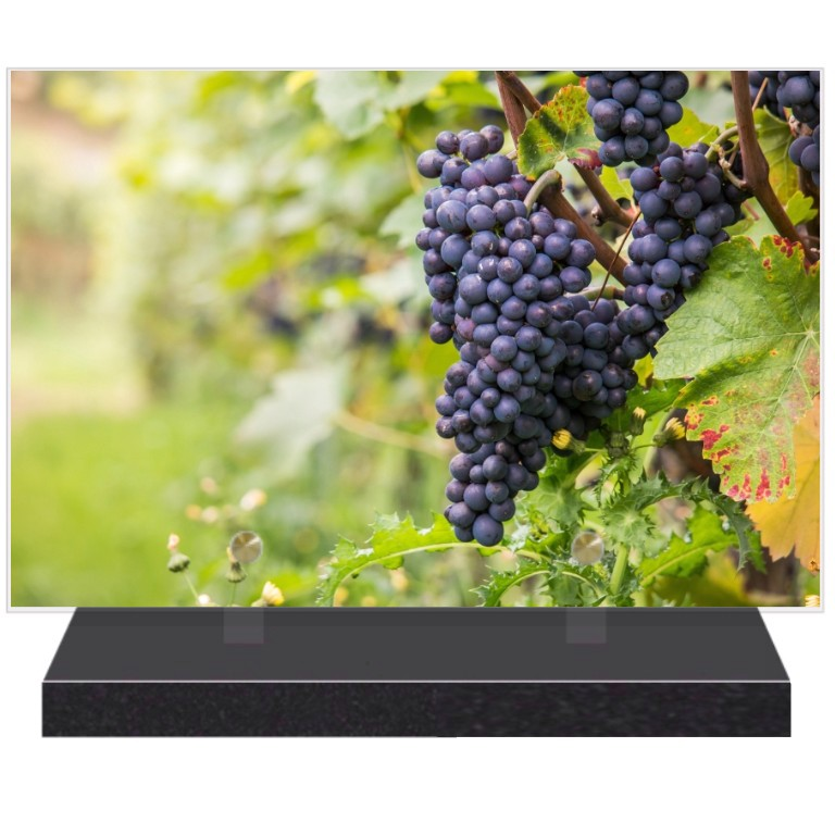 Vigne Plaques funéraires Vigne - thème vigne pour plaques funéraires