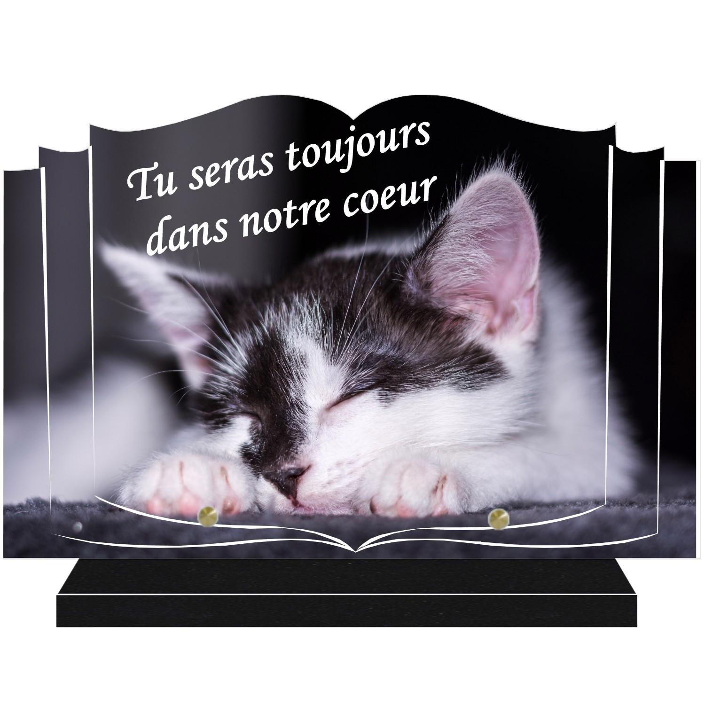 Plaques funéraires chat - gravure theme chats pour plaques funeraires