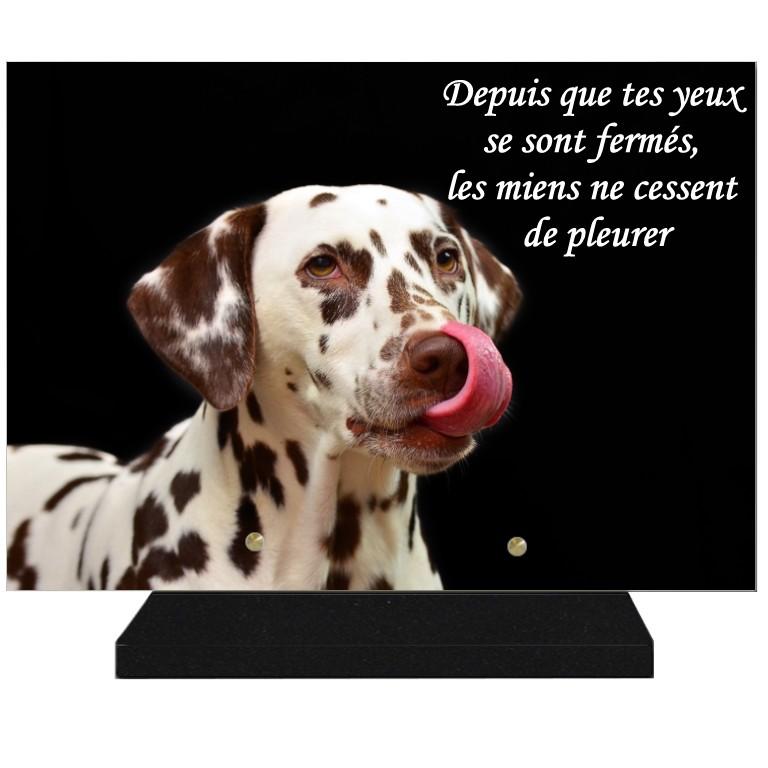 CHIEN Plaques funéraires chien -  theme chiens pour plaques funeraires