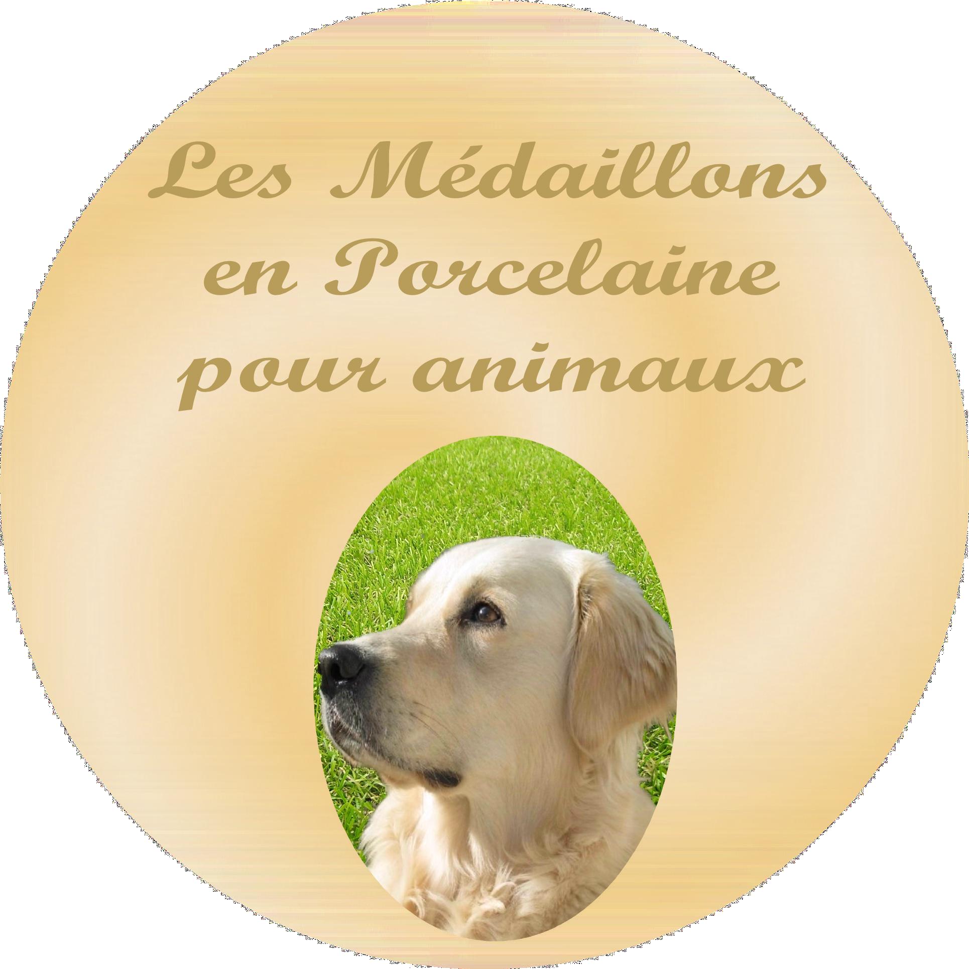 medaillon souvenir pour animaux, chats, chiens, oiseaux, chevaux...